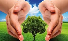 sostenibilidadambiental